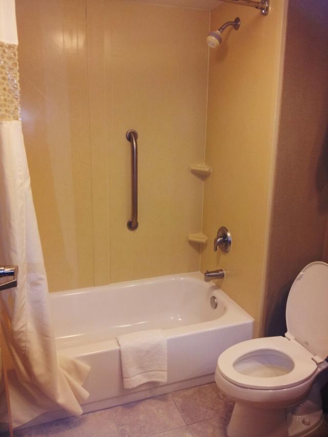 Trip-shower[1]
