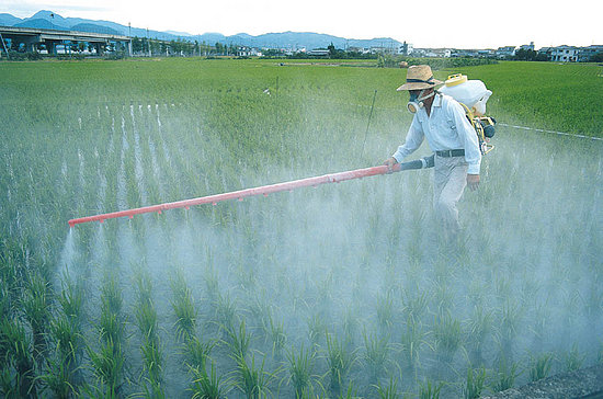 ewg-pesticides
