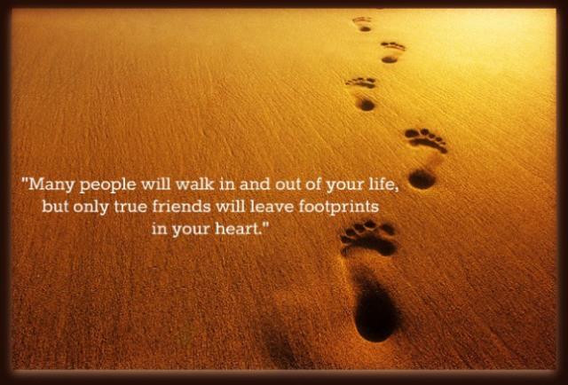bbb-footprints-friends