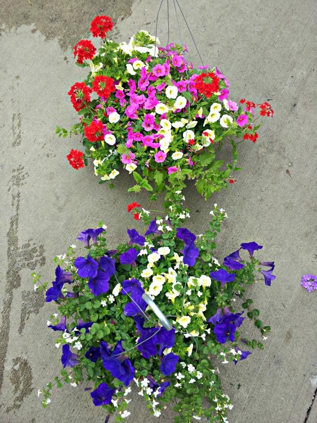 mimm-flowers-nursery