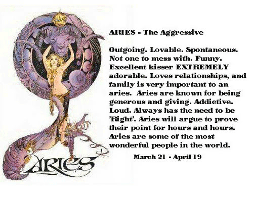 survey-sign-aries-3
