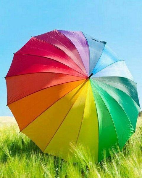 wiaw-gp-umbrella