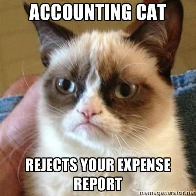 wir-accounting-cat