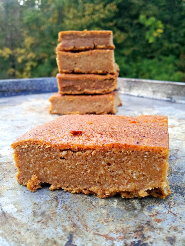 wir-pumpkin-bar