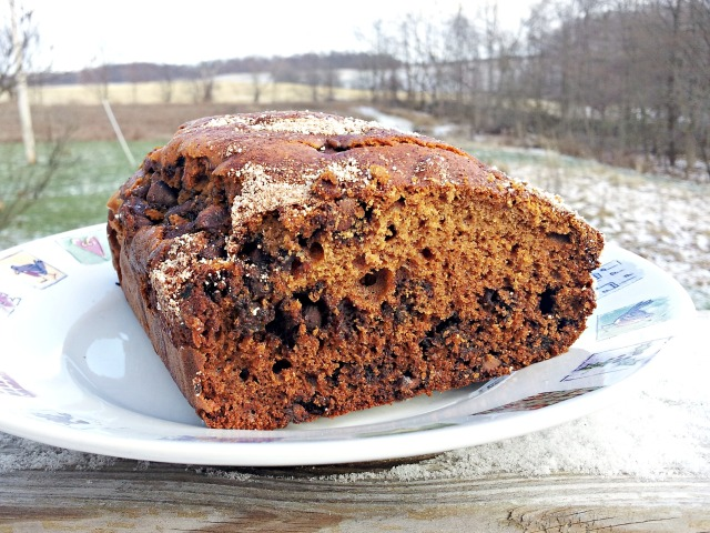 Quick and Healthy Amish Friendship Bread (With Paleo and Non-Paleo Directions!)