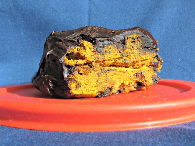 pumpkin-chocolate-cake-slice-2.5