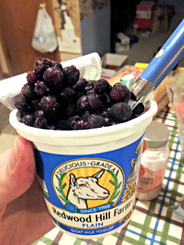 wiaw-yogurt-blueberries